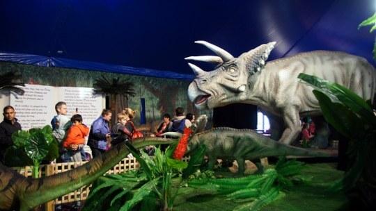 Dinosaur Adventures