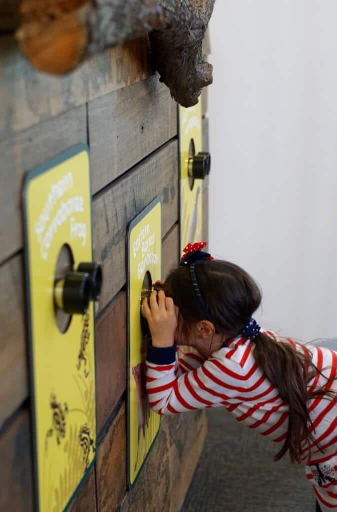Keeper Kids Melbourne Zoo indoor play