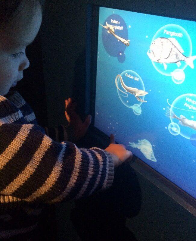 deep oceans scienceworks