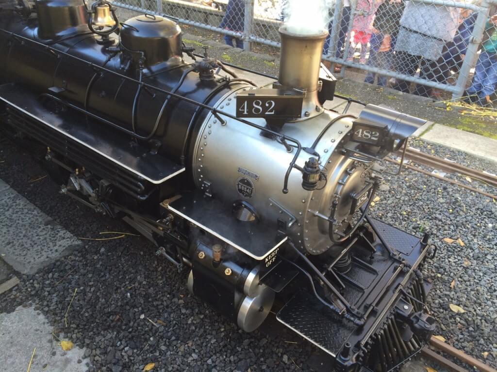 Box Hill Miniature Railway5