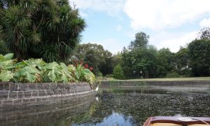 Punt Tours Melbourne, Royal Botanic Gardens Melbourne, Birdwood Avenue, South Yarra