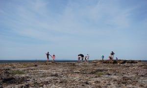 Ricketts Point Marine Sanctuary, 420 Beach Rd, Beaumaris