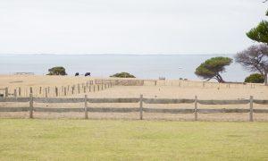 Churchill Island Heritage Farm, 246 Samuel Amess Drive, Churchill Island, Newhaven, Phillip Island
