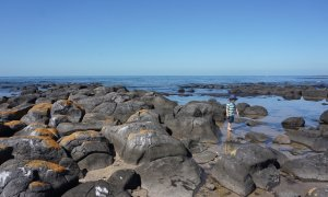 Point Gellibrand Coastal Heritage Park, Battery Road, Williamstown