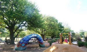 Halliday Park Mitcham