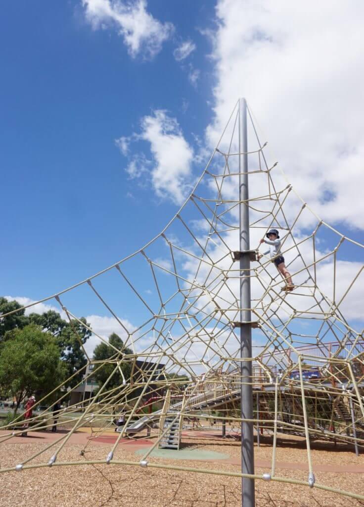 Moth Playground