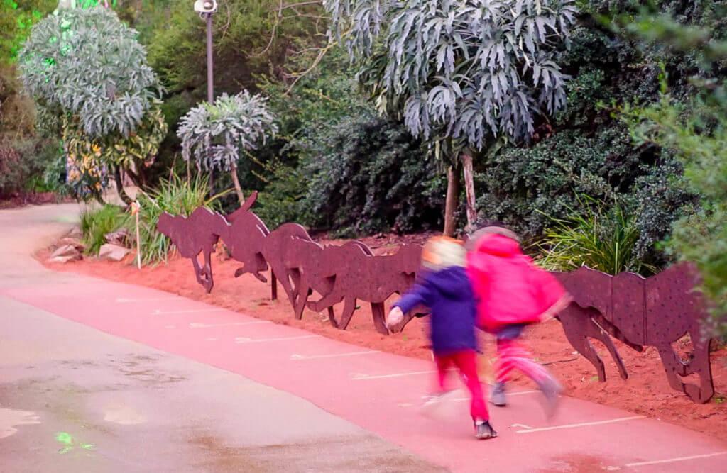 wild nights werribee zoo