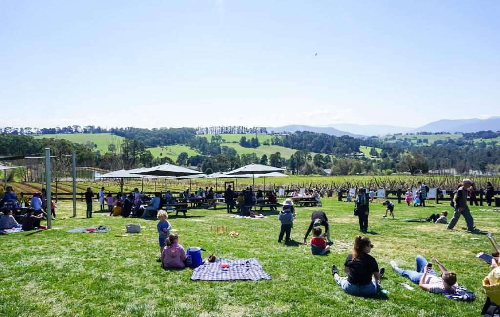 blossom festival yarra valley