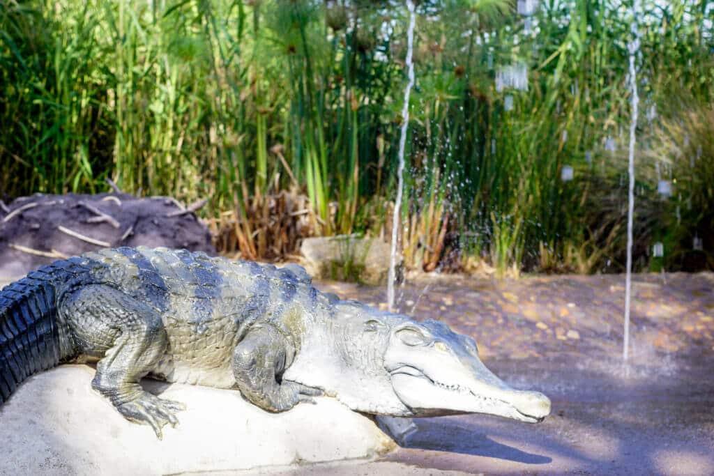 carnivores trail melbourne zoo