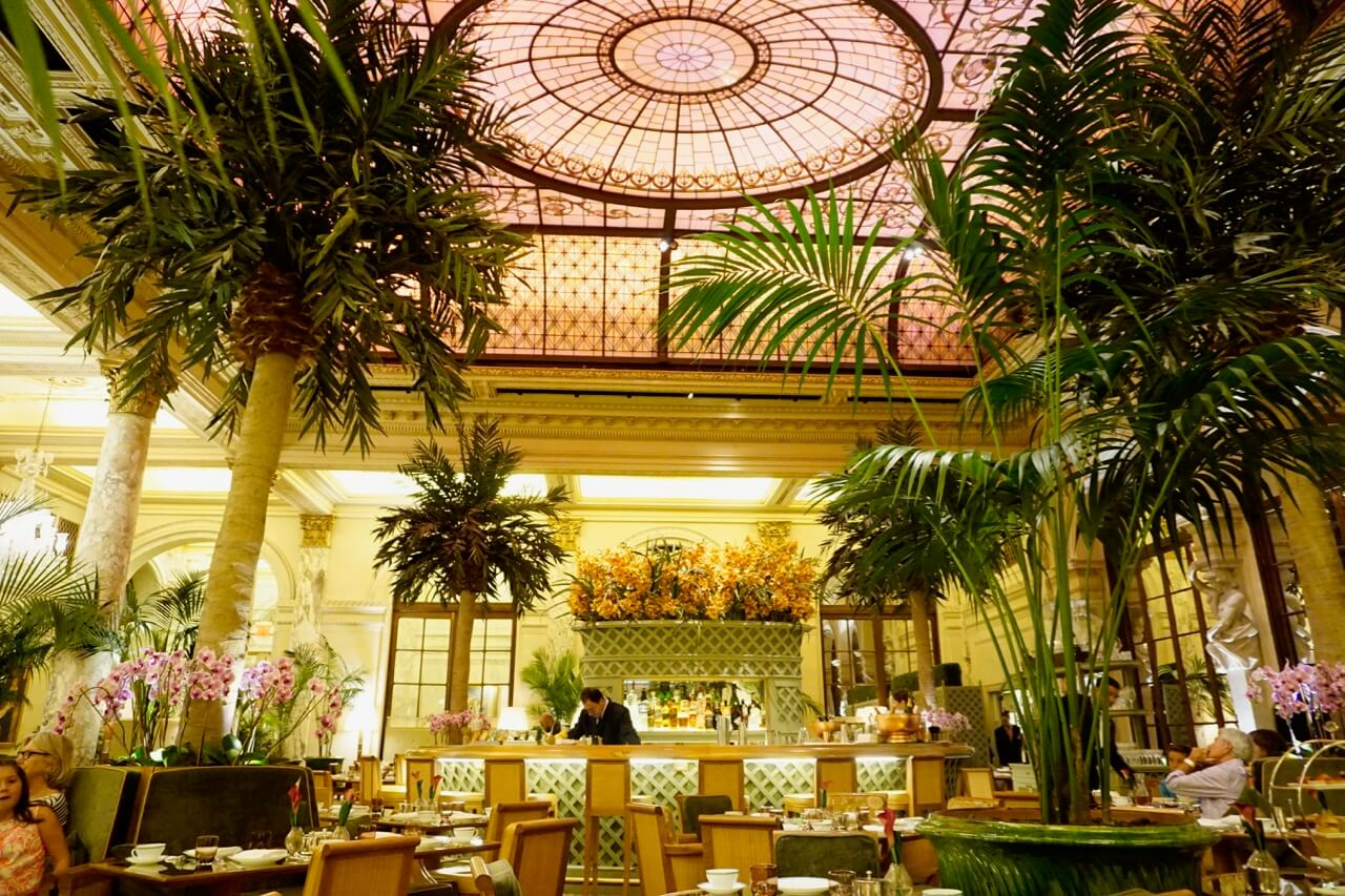 palm court plaza hotel