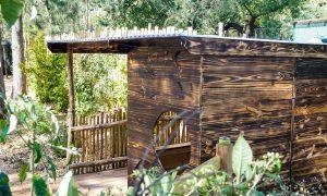 Nature Play Healesville Sanctuary