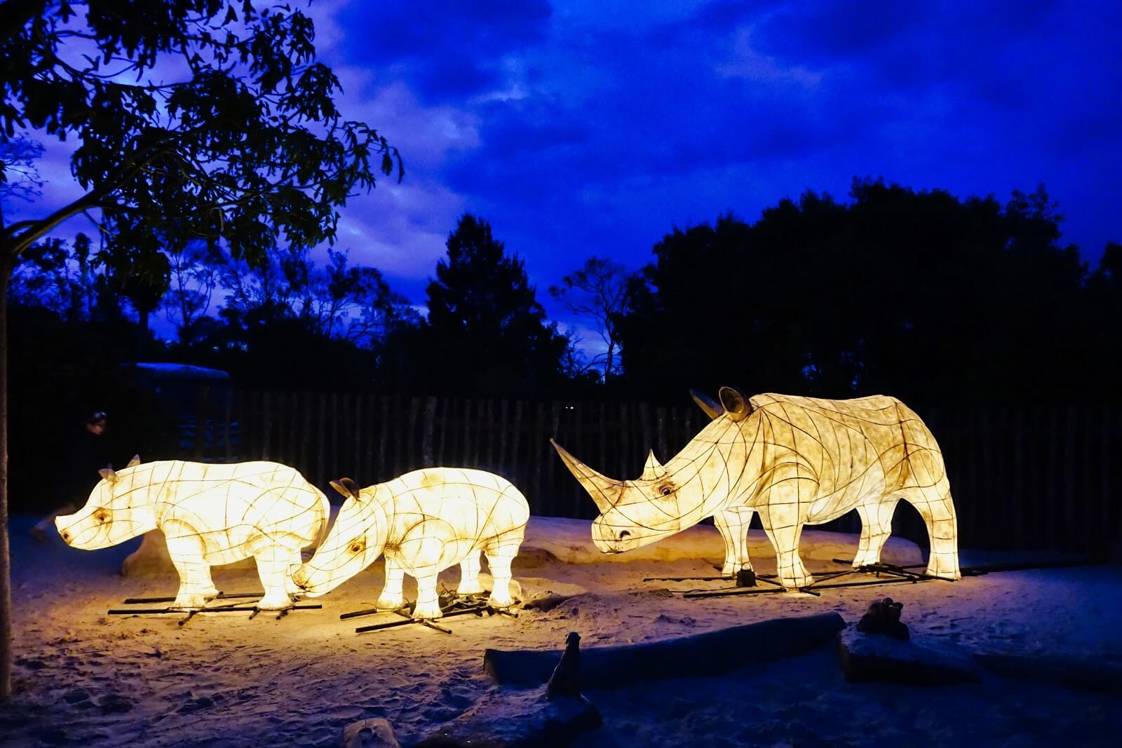 werribee zoo sunset safari