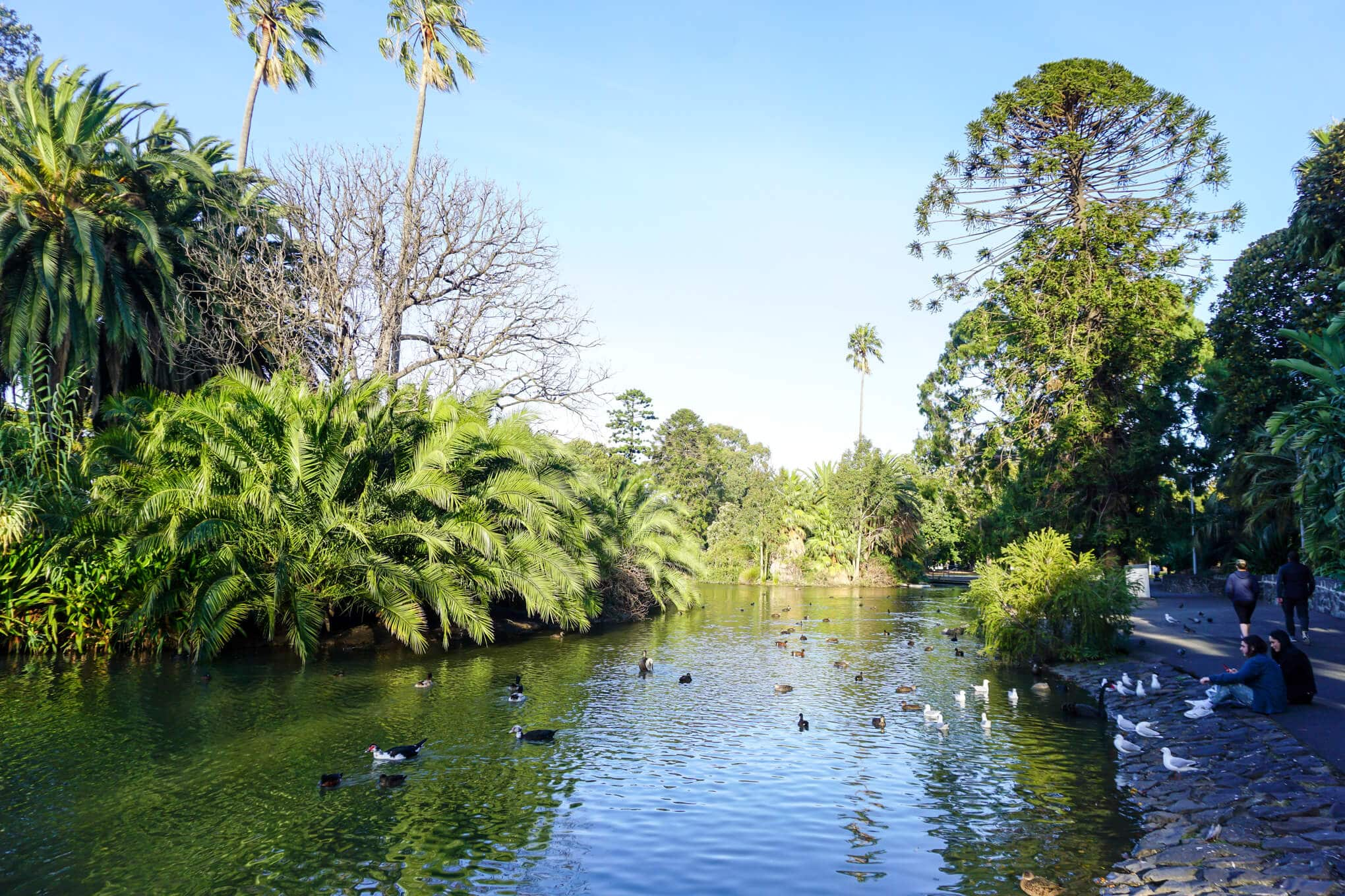 Queens Park in Moonee Ponds - Top things to do
